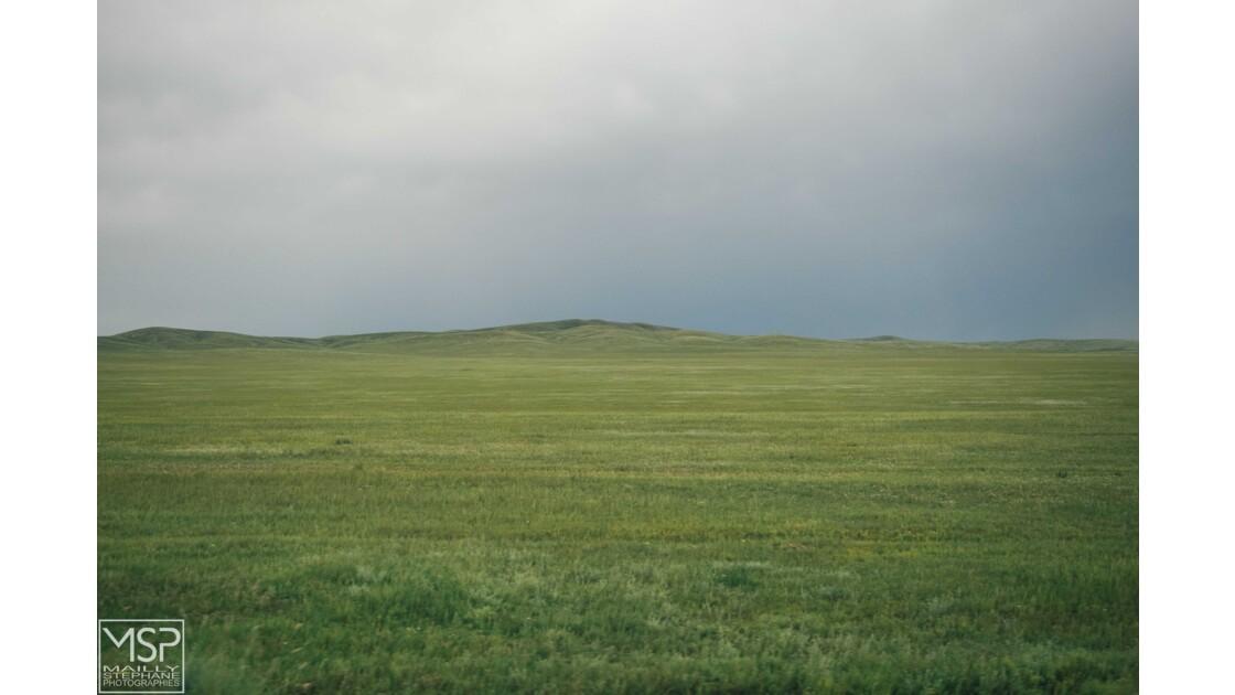 Mongolie - La steppe