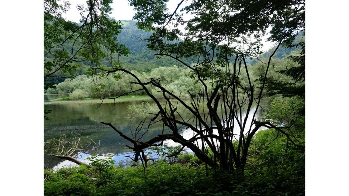 Monténégro lac de Biogradsko 3