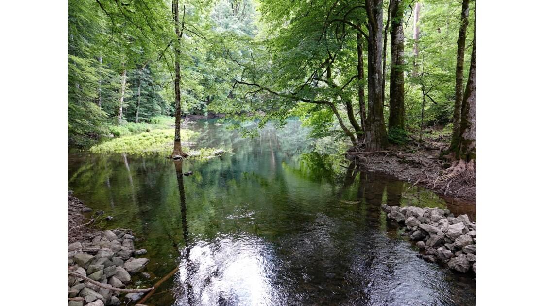 Monténégro lac de Biogradsko 4