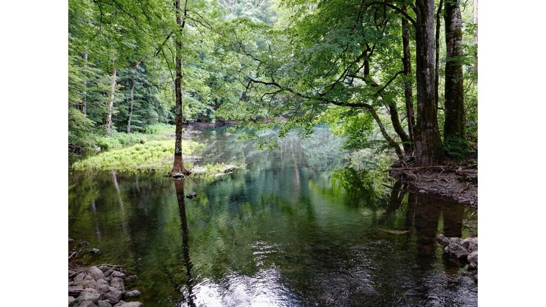 Monténégro lac de Biogradsko 5