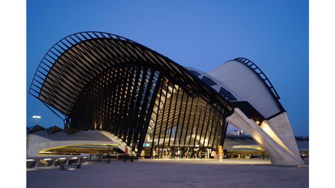 Gare de Lyon Saint Exupéry II
