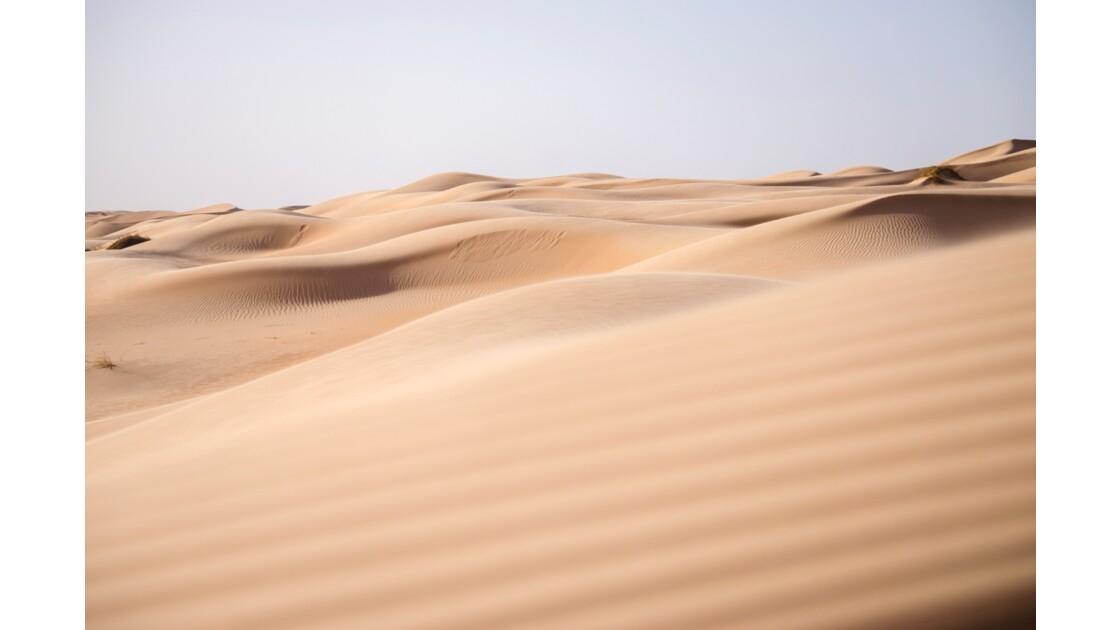 Erg Ouarane - Aux portes du désert