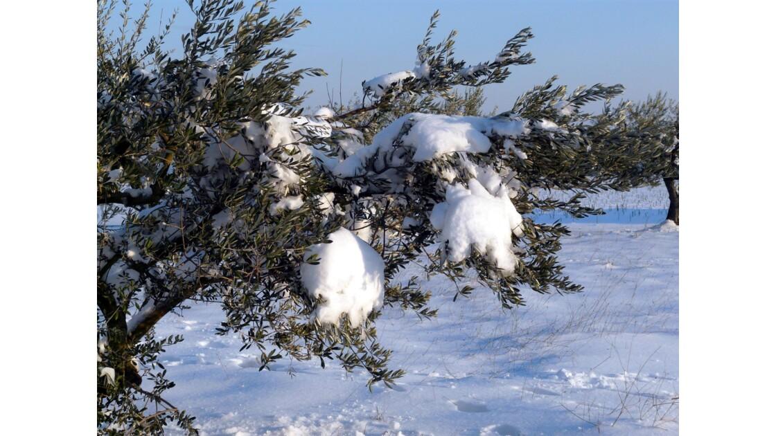 La montagnette sous la neige