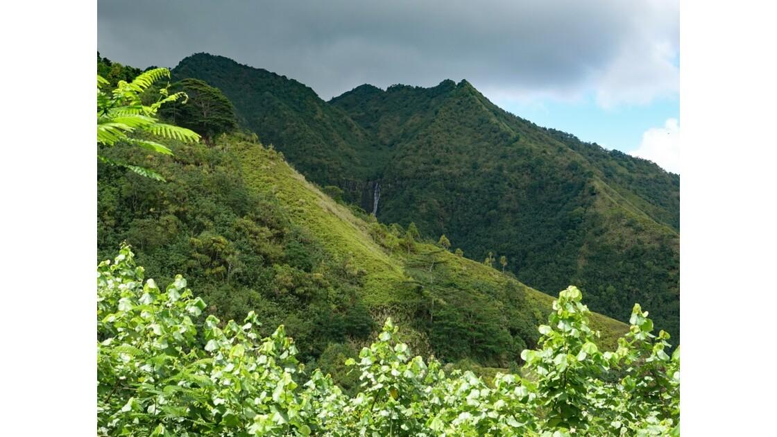 Les Marquises - Nuku Hiva - Près du Site de Kamuihei