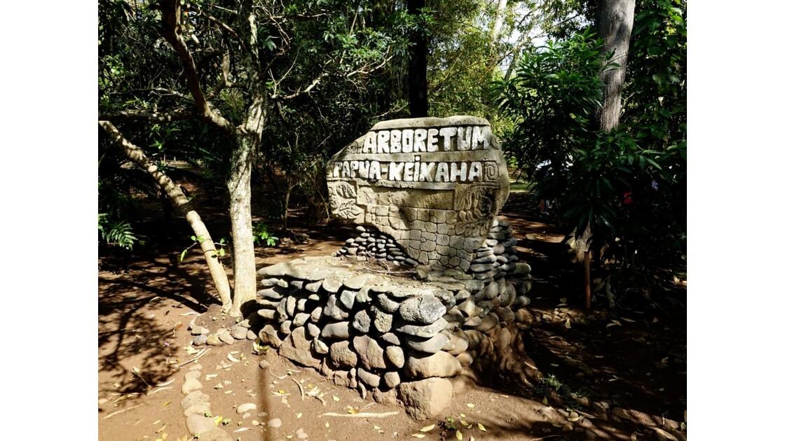 Les Marquises Ua Huka - Arboretum de Vaipaee 1