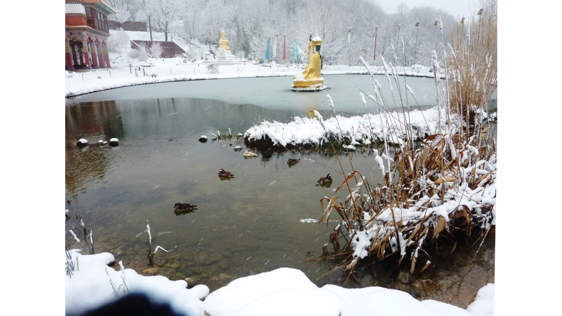 Roqueredonde - Hérault - Magie de la neige sur le temple bouddhiste Lerab Ling