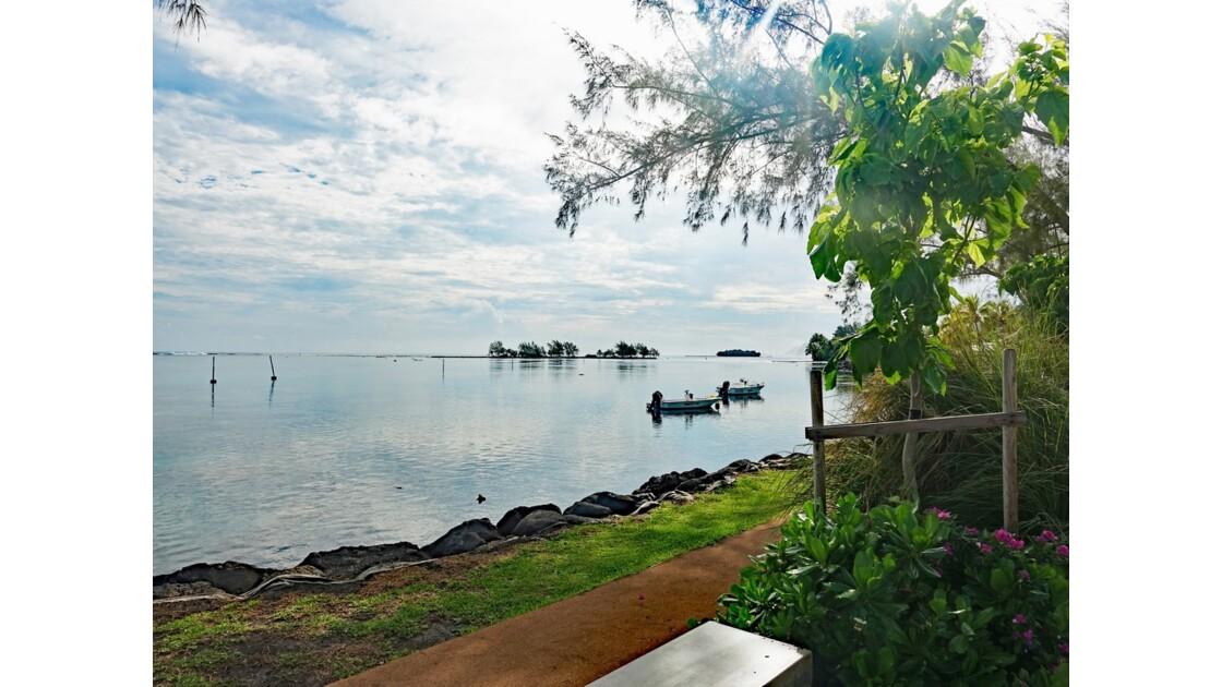 Tahiti Nui Pointe Vénus 4