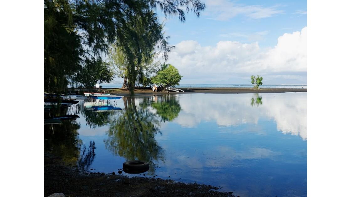 Tahiti Nui Pointe Vénus 2