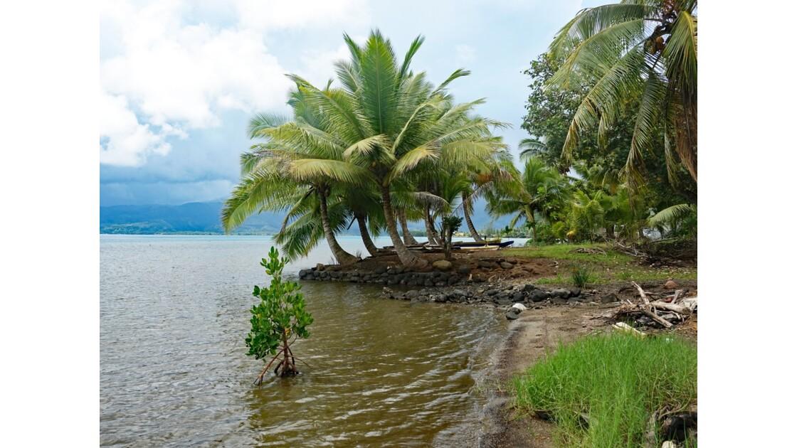 Tahiti Iti Vairo Plage de Maui 3