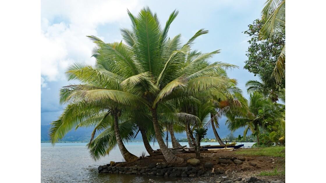 Tahiti Iti Vairo Plage de Maui 4