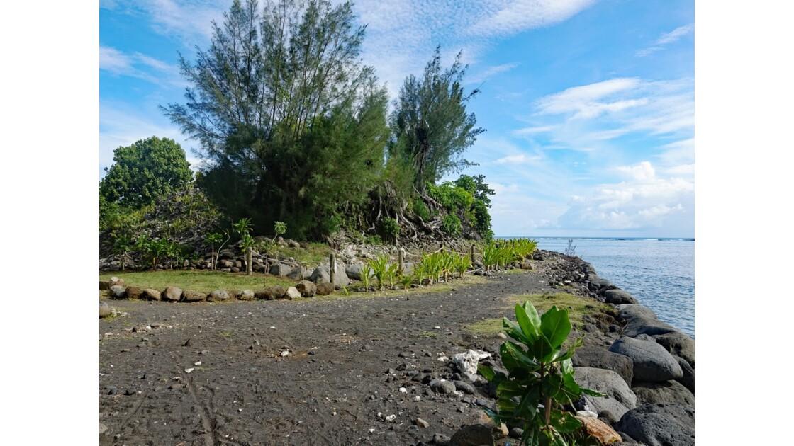 Tahiti Nui Mare Mahaiatea 2