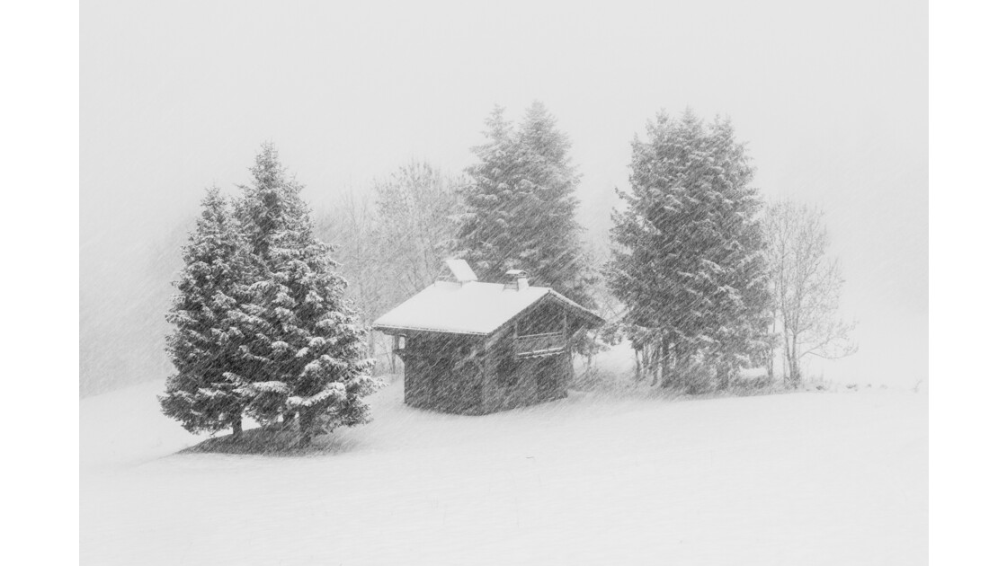 Vision hivernale