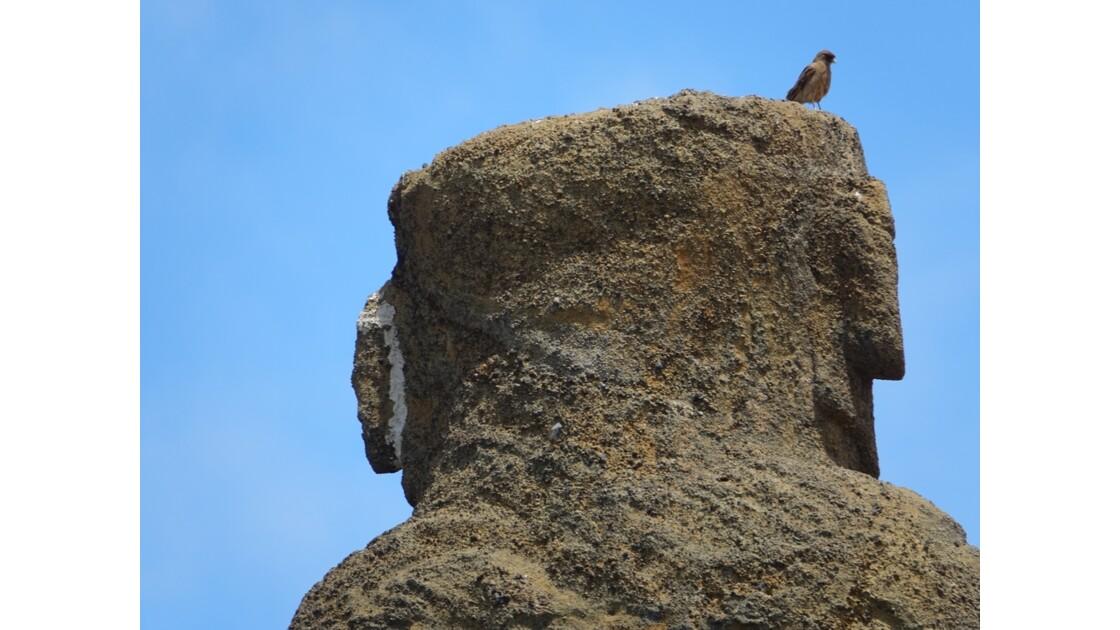 Île de Pâques Anakena Ahu Ature Huki et l'oiseau 1