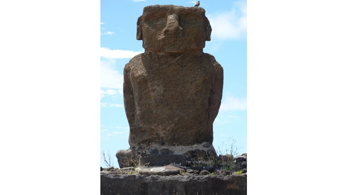 Île de Pâques Anakena Ahu Ature Huki et l'oiseau 3