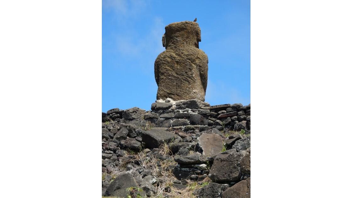 Île de Pâques Anakena Ahu Ature Huki et l'oiseau 4