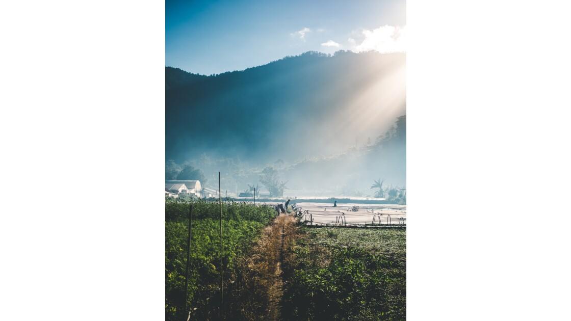 Début de journée à Bali