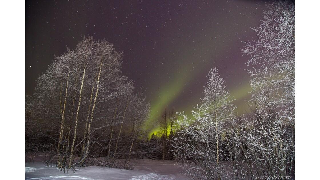 Aurores Boréales en Laponie Finlandaise