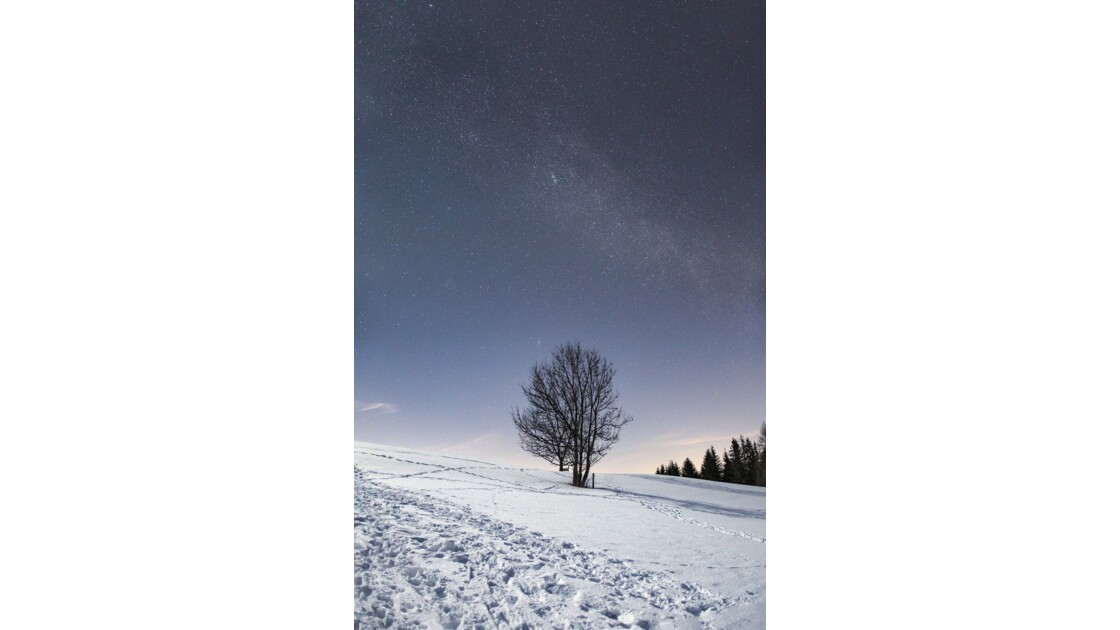 One cold winter night