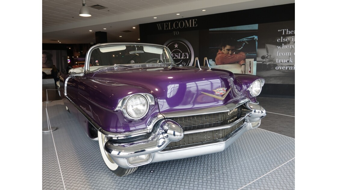 Memphis Graceland Les voitures du King 2
