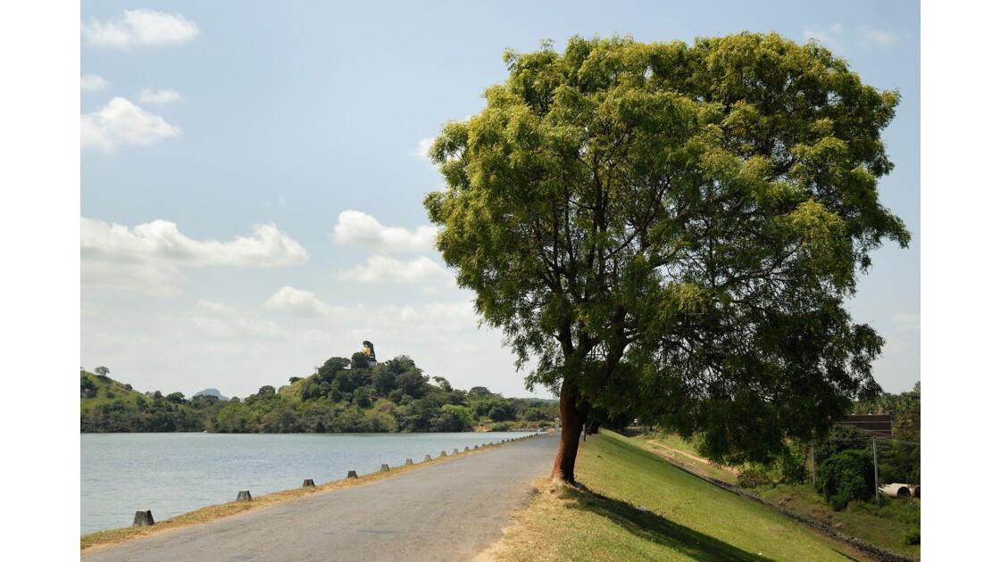 Dambulla, Route.