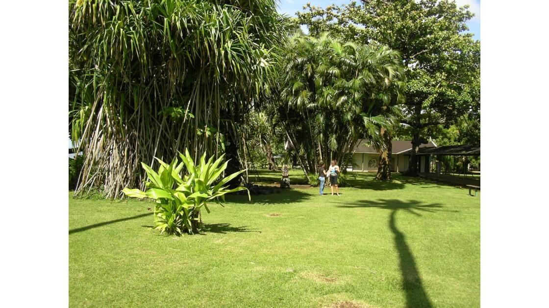 Les jardins du musée Gauguin