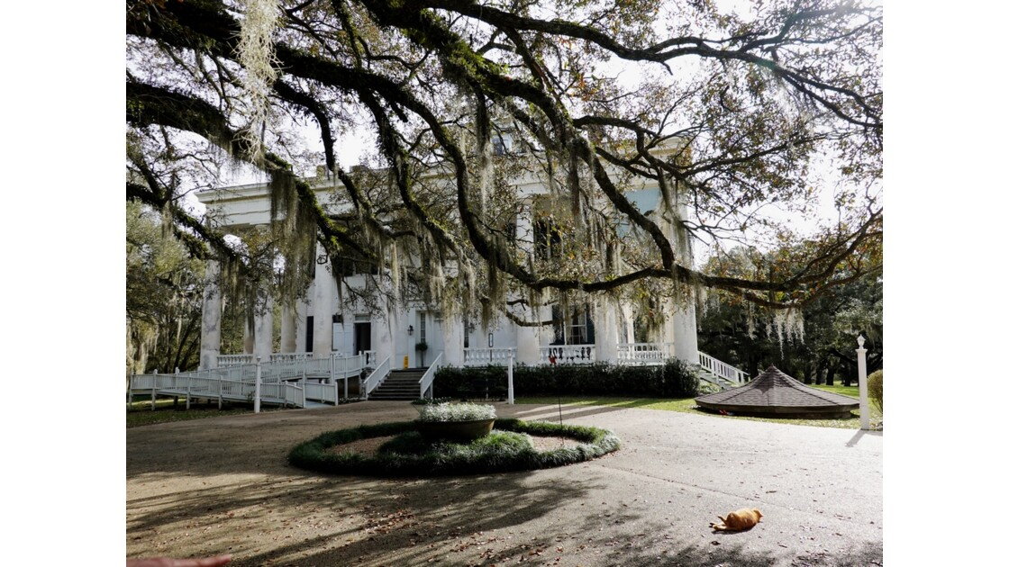 St Francisville Greenwood Plantation 9