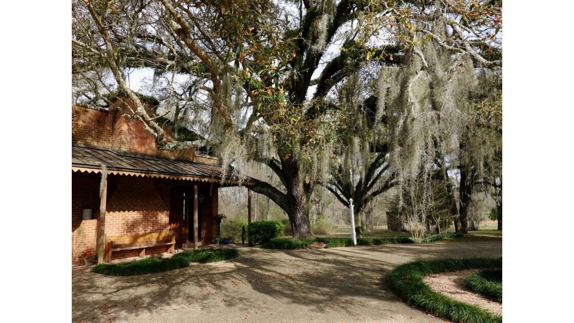 St Francisville Greenwood Plantation La cuisine 5