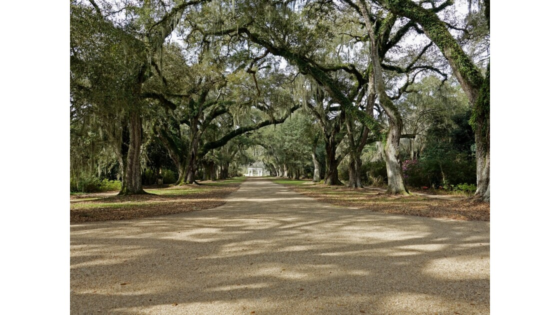 St Francisville Rosedown Plantation and Gardens 4