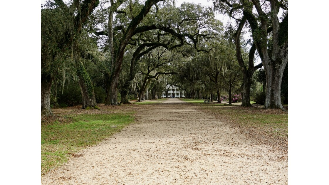 St Francisville Rosedown Plantation and Gardens 5