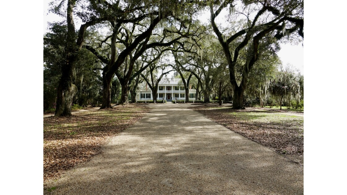 St Francisville Rosedown Plantation and Gardens 8