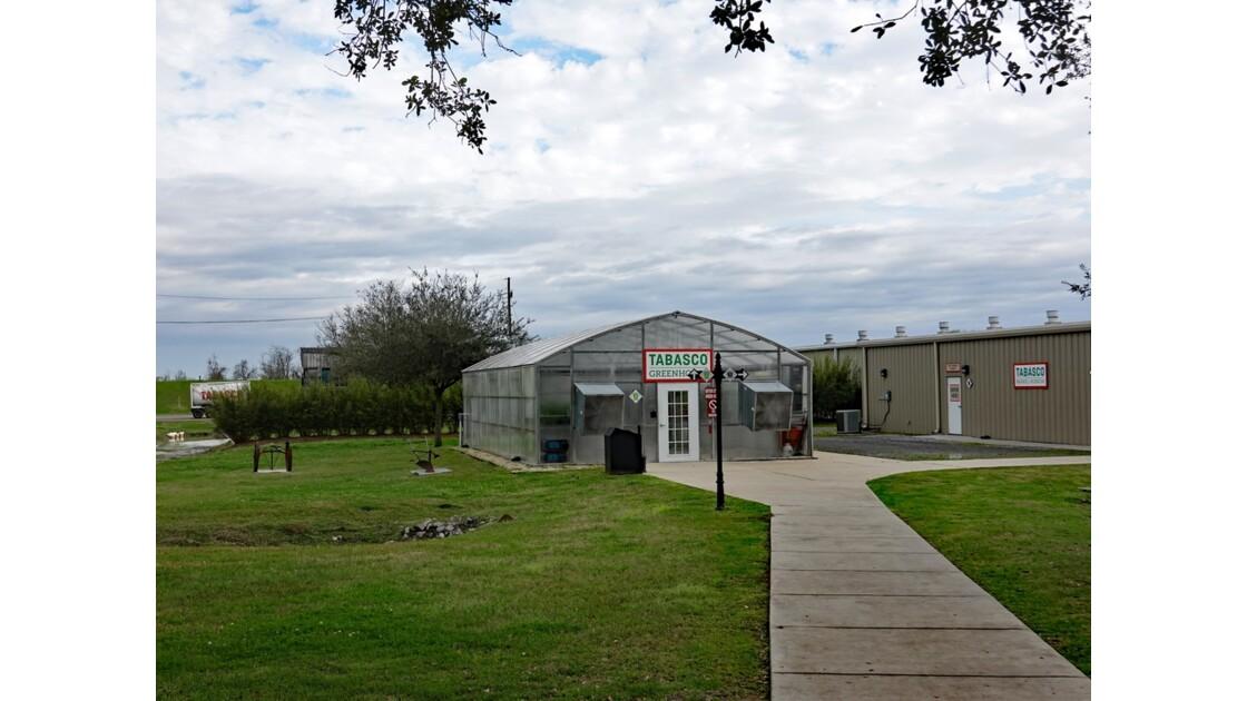 Avery Island Tabasco Factory les serres 1