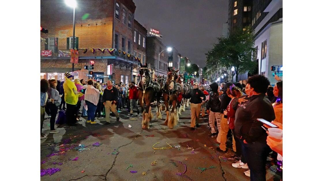 New Orleans Carnaval Krewe of Bacchus 1