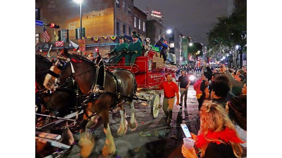 New Orleans Carnaval Krewe of Bacchus 2
