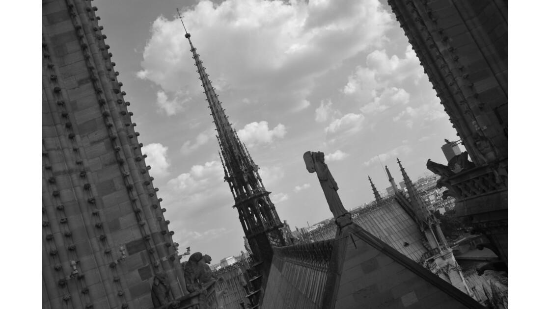 Cathedral of Notre-Dame de Paris