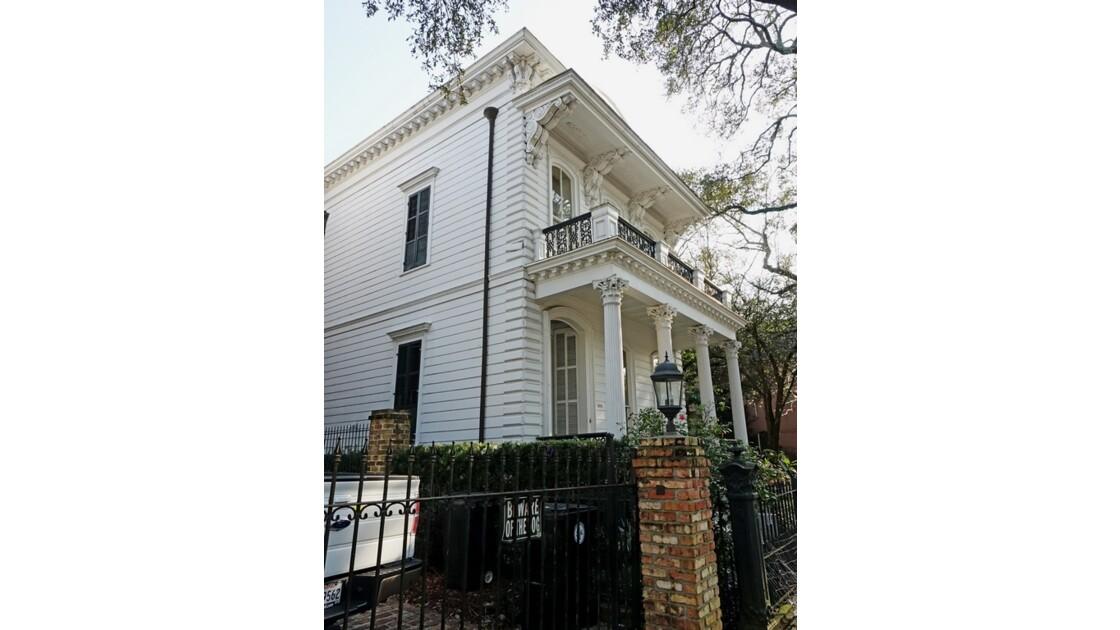 New Orleans Garden District St Charles Avenue 3
