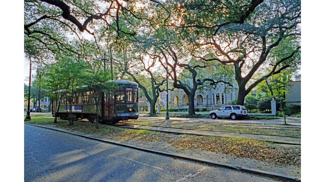 New Orleans Garden District Streetcar named Desire