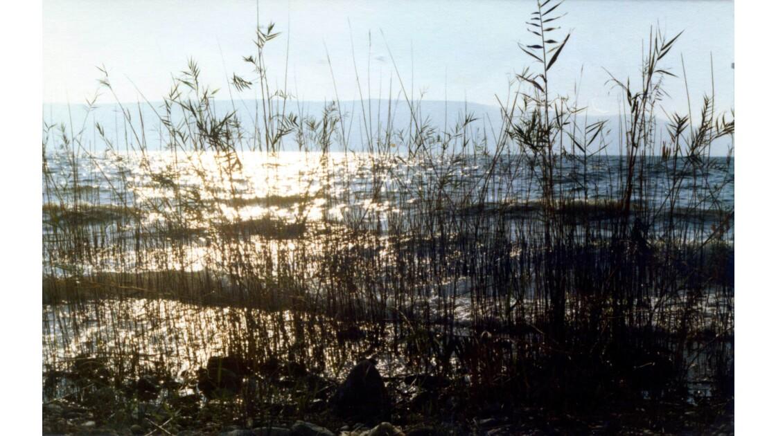 Sur les bords du lac Tibériade