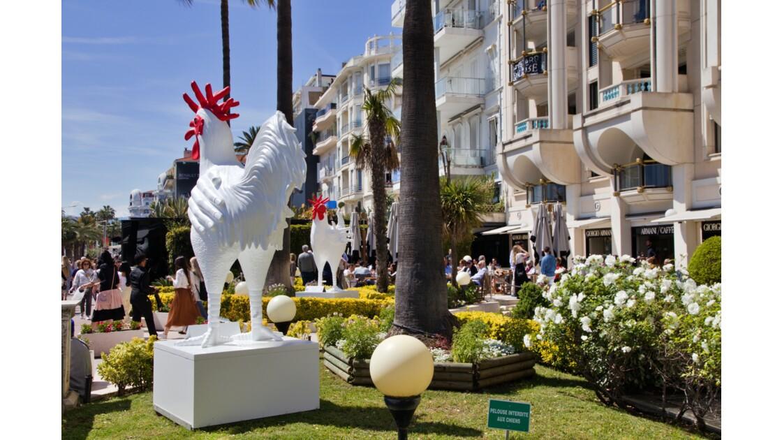 Festival du Film a Cannes 2019