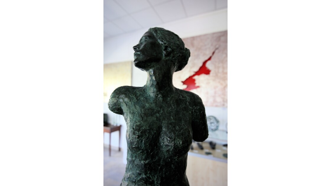 DIAN'Arte Museum BORGO (Hte Corse)