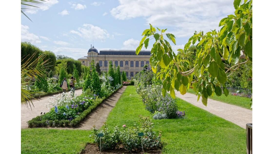 JARDIN DES PLANTES A PARIS