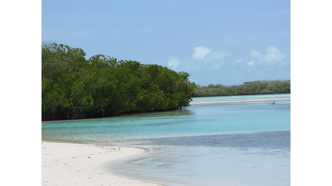 Perdu dans la mer des Caraïbes