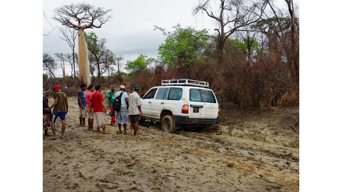 Madagascar De Morondava à Manja 3