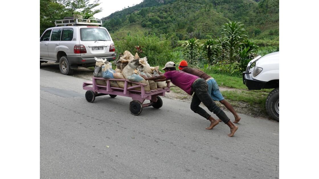 Madagascar Les chariots de Ranomafana 3