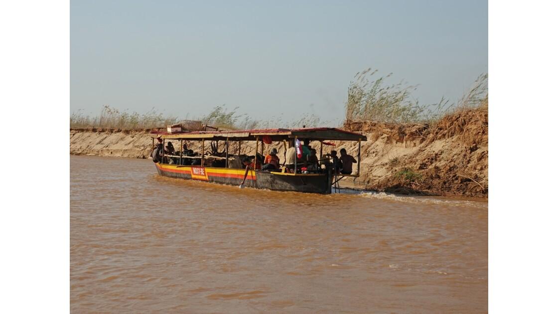 Madagascar Tsiribihina Transport de zébus 2