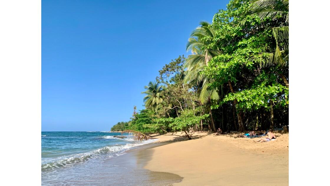 «Caribéesque»