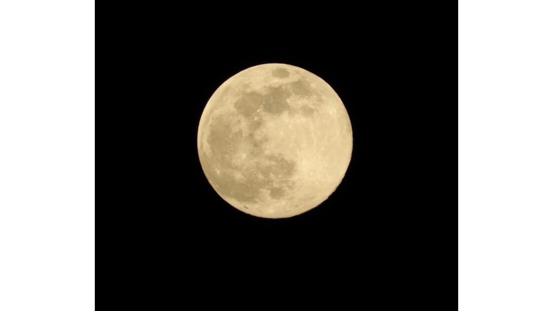 """Lune """"rose"""""""