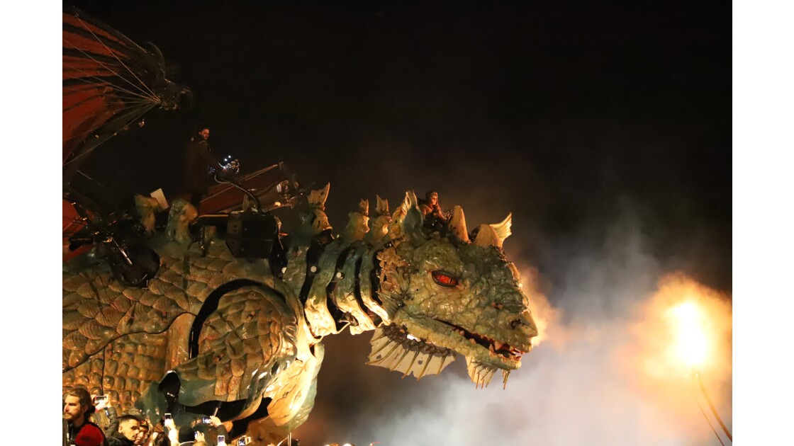 Dragon la nuit sur la digue