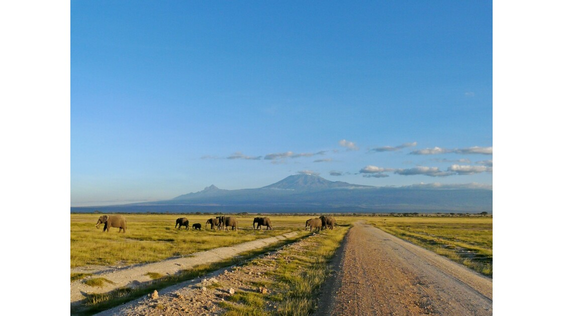 Kenya Parc d'Amboseli Sunset sur le Kilimandjaro 3