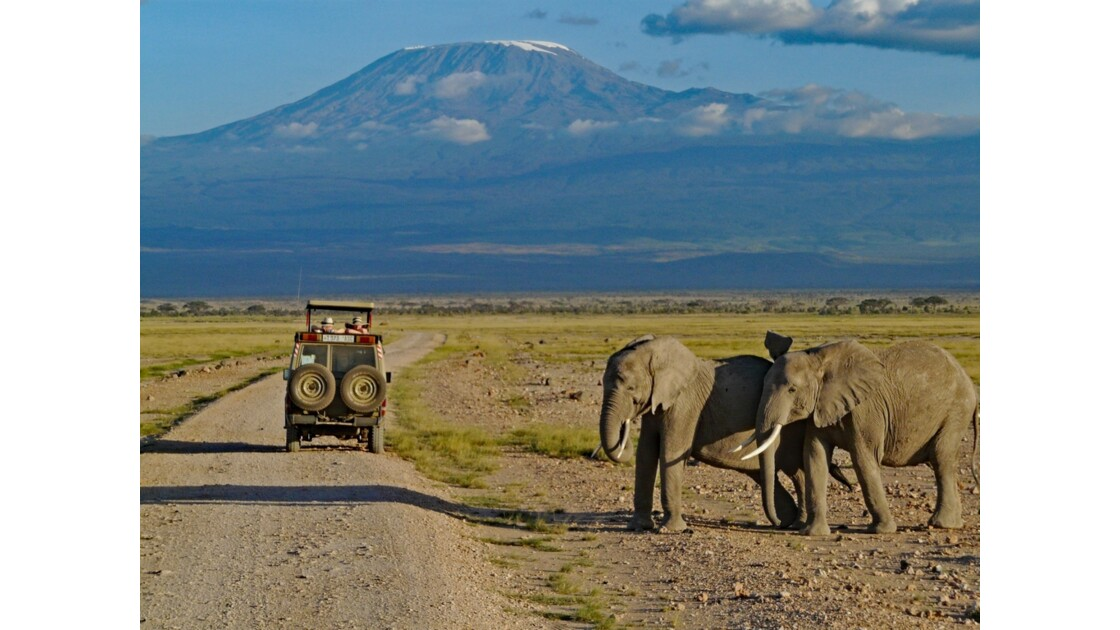 Kenya Parc d'Amboseli Sunset sur le Kilimandjaro 2