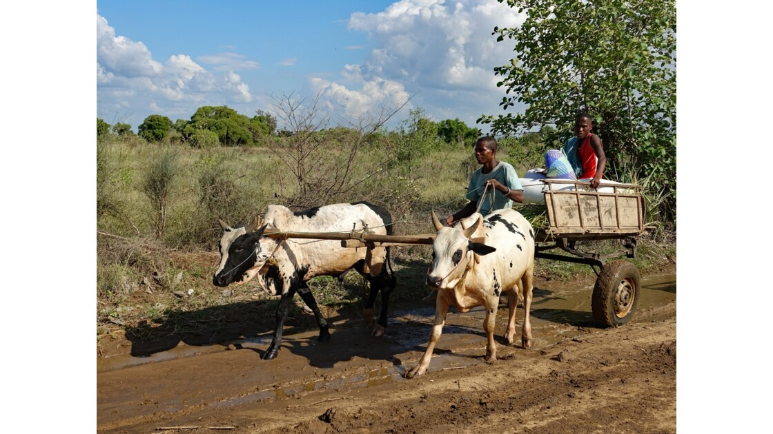 Madagascar Piste de Manja à Bevoay 11